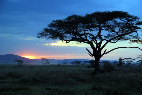 African_sunset_7096464