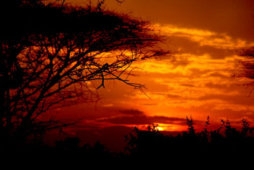 African_sunset_7097351