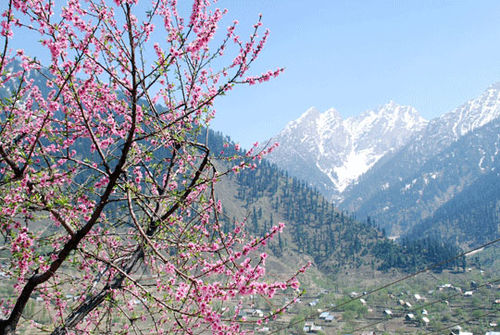 Kashmir_mountain_7-04-2393