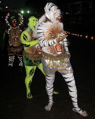 Tiger_2006-09-3686