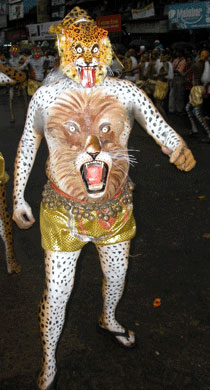 Pulikkali Tiger_2006-09-3598