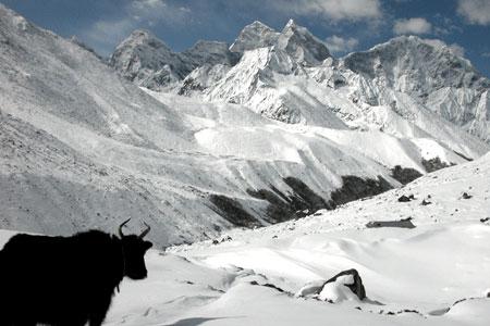 Himalayas_2006-04-1557
