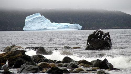 Iceberg8064136