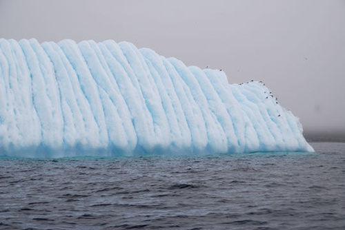 Iceberg8064161