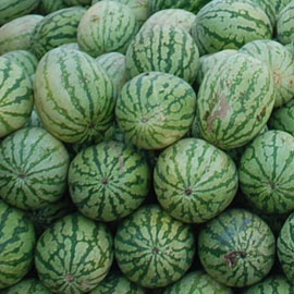 Salad7-08-5005wtrmln