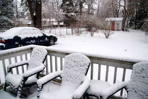Snow8-02-0388