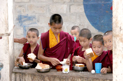 Tibet-ear_2540