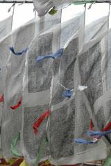 Mysore_prayer_flags_2596