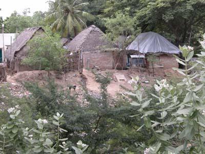 Village_huts