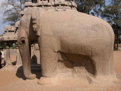 Maha_elephant_2004_0796
