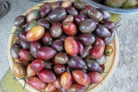 Kerala_tomatoes2_2039