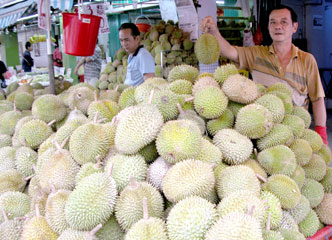 Singapore_durian_p8_2326