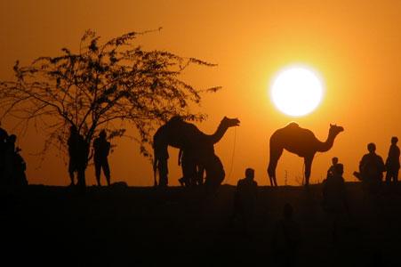 Pushkar_sunset_2005-11-6398