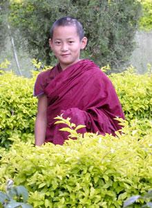 Tibet_goldenboy_2558