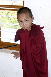 Tibet_saucereyes_2563
