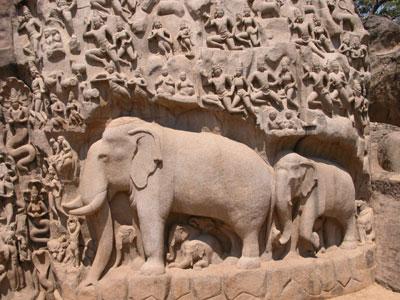 Maha_elephantandhumans_2004