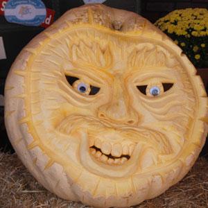 Pumpkin8-10-7132