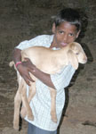 Boy_with_goat_2004_0160