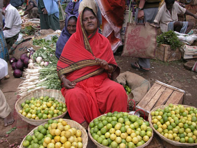 Market_lime_and_orange_1329