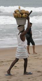 Headcarry_beach_2449