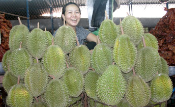 Durian_2005-03-1561