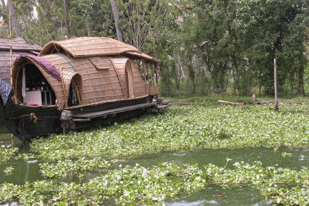Kerala_boat_2006-01-0014