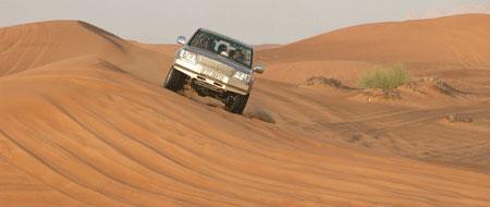 Desert_2005-11-6591