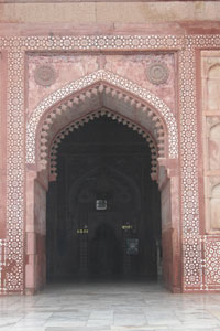 Pink_agra_2005-0085
