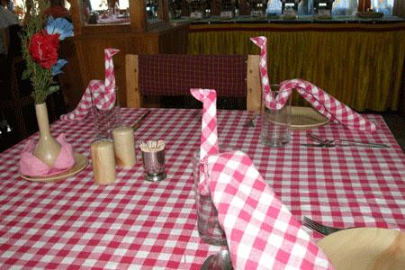 Pink_napkin_2006-11-5595