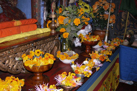 Yellow_puja_06-11-5684