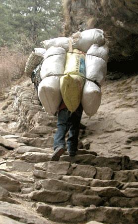 Sherpa_2006-04-1724