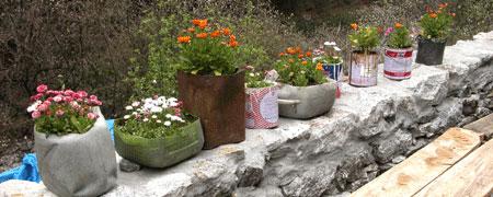 Flower_2006-04-1747