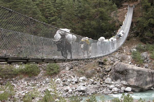 Bridge_2006-04-1735