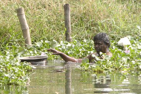 Kerala_mussels_2006-01-0167