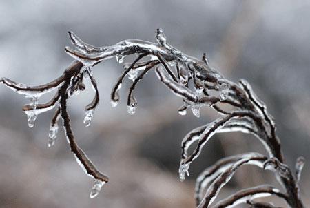 Ice_2007-01-0244