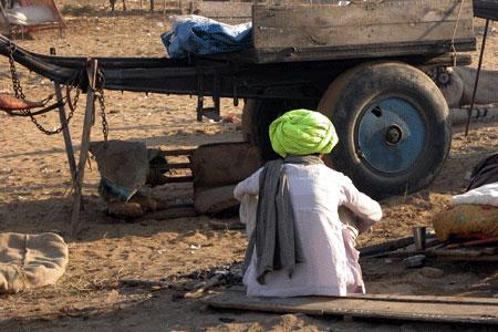 Green_turban_2005-11-6437