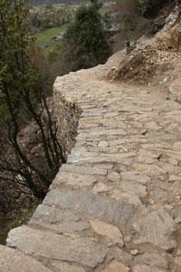 Trail_2006_04_1864