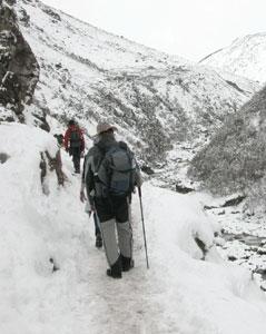 Trail_2006_04_1562